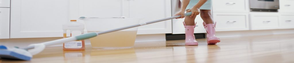 Kitchen Cleaning Washington